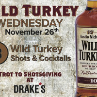 Wild Turkey Wednesday